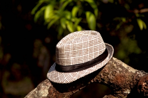 Hat White/Brown