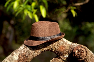 Hat Brown